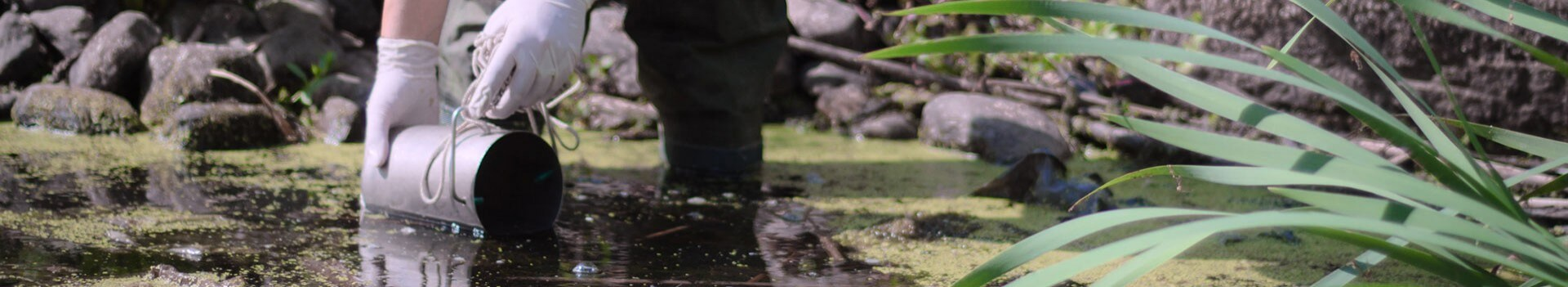 Person gathering a water sample from a stream